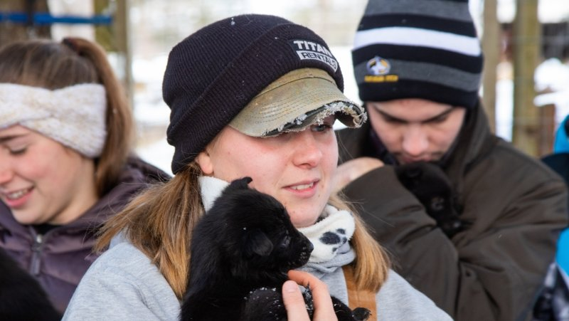 three students hold adorable little Alaskan husky puppies outside in the snow.
