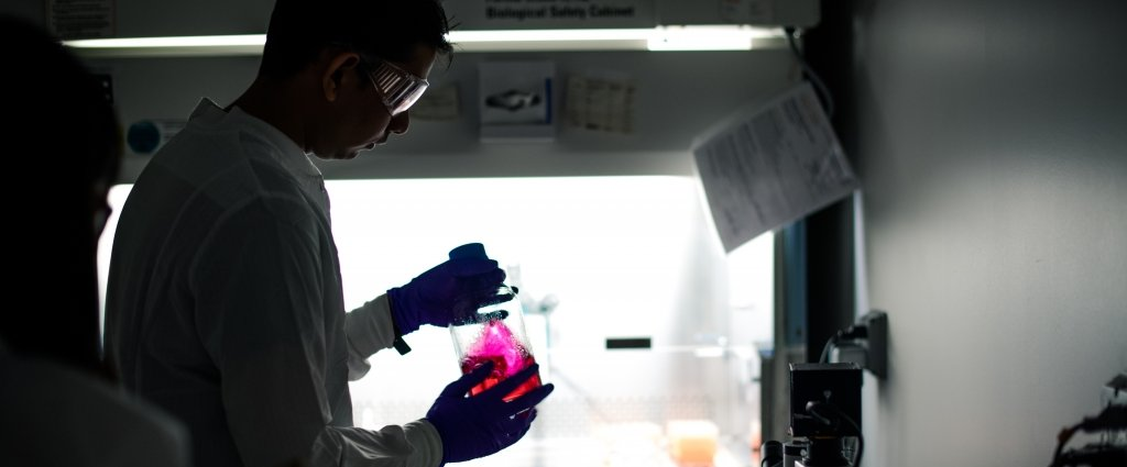 man in lab with beaker of pink solution