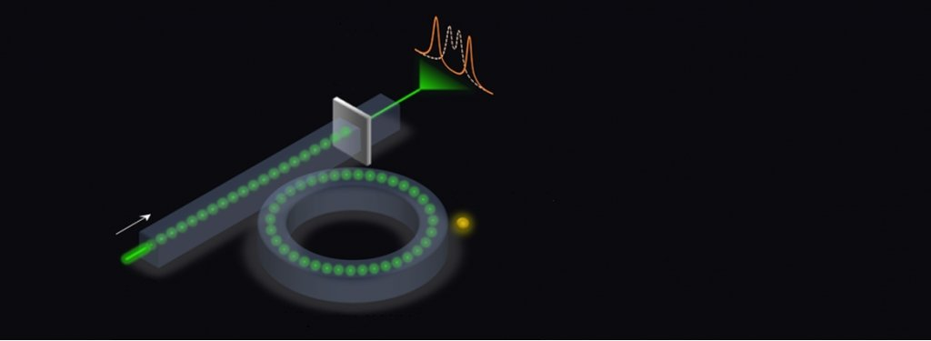 A graphic representation of a microring sensor.