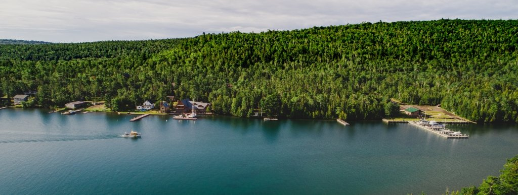 A gold and black boat in a harbor goes past shore homes and green forest in a Copper Harbor cove