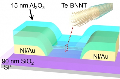 schematic of nanowire