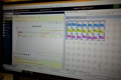 computer screen with RNA extraction data