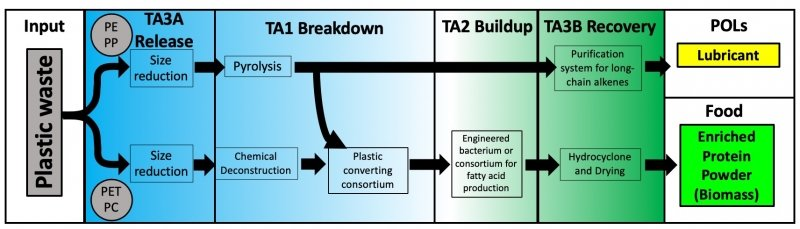 A graphic that describes the process the research team will use to convert plastic waste into food and lubricants.