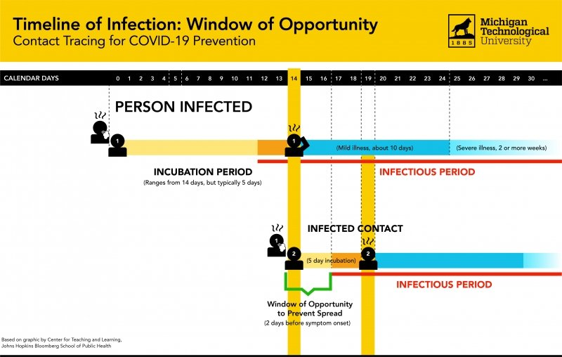 A graphic of the timeline for a COVID-19 infection, disease incubation period, and time it takes to spread to another person.