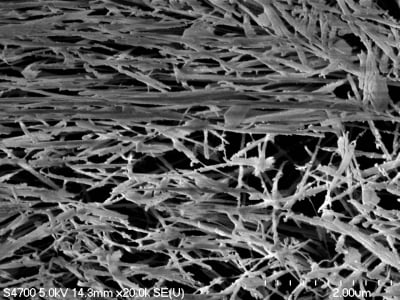 A microscope image of plasma-etched polymer that shows the strands of the polymer.