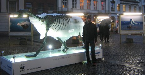 "Adam Airoldi with the World Wildlife Fund's ""ice bear"" display at the climate change conference in Copenhagen."