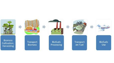 From plants to transportation and back again, the life cycle of biofuels