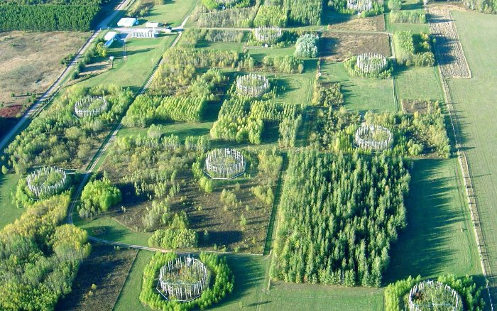 Aerial view of Northern Forest Ecosystem Experiment site in northern Wisconsin