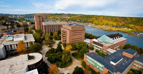 Capital campaign seeks to increase Michigan Tech faculty endowment, student aid.
