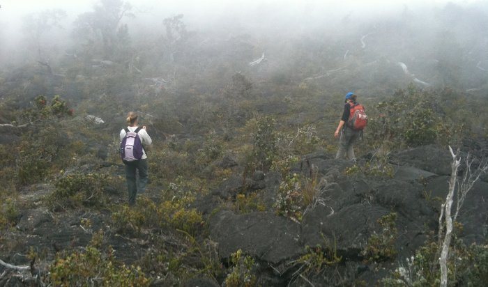 Researchers trek across one of the many kipukas of Mauna Loa.