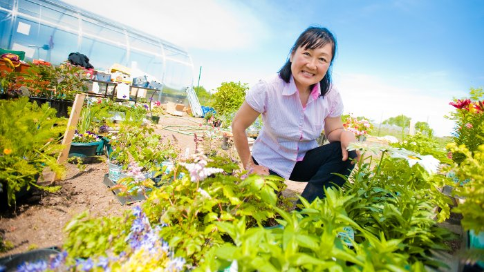 At G&A Garden Center, Amber Campbell grows and sells a wide variety of plants.