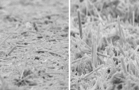 The non-aligned manganese dioxide nanorods on the left were made using conventional methods. The aligned nanorods on the right were grown in Dennis Desheng Meng's lab using electrophoretic deposition. Photos by Sunand Santhanagopalan