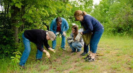 Teachers examine plants growing near the shores of Lake Superior.