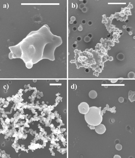 Field emission scanning electron microscope images of different categories of soot particles identified by scientists Claudio Mazzoleni and Swarup China. Each has different optical properties, and only 4 percent are uncoated, bare soot. Swarup China image