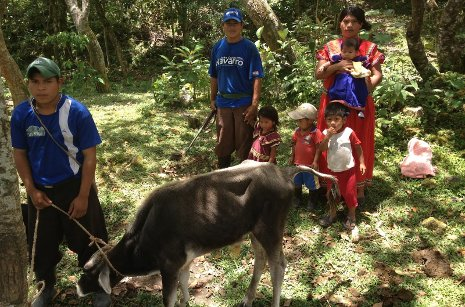Chett Hopp helps families  like this one in Panama understand volcanic hazards and improve their water and sanitation.
