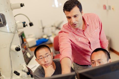 Reza Shahbazian-Yassar, pictured here with students in his lab, aims to make better lithium ion batteries by taking advantage of imperfections in materials. Sarah Bird photo