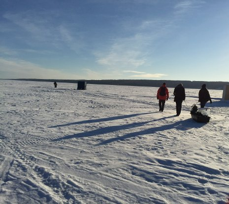Zhaohui Wang and her assistants walk across L'Anse Bay to test their acoustic network under the ice.