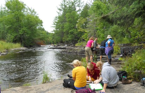 School of Forest Resources and Environmental Science students studying insect ecology and forest health.