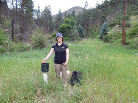 Mary Ellen Miller, a research scientist at the Michigan Tech Research Institute, stands next to a tipping bucket gauge at the High Park burn area in Colorado.