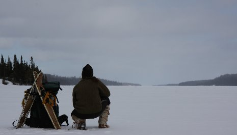 John Vucetich spends part of his winters on Isle Royale, studying moose and wolf ecology.