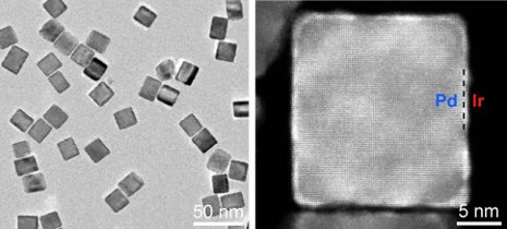 A new catalyst that improves the sensitivity of the standard PSA test more than 100-fold, pictured above, is made of palladium nanocubes coated with iridium.