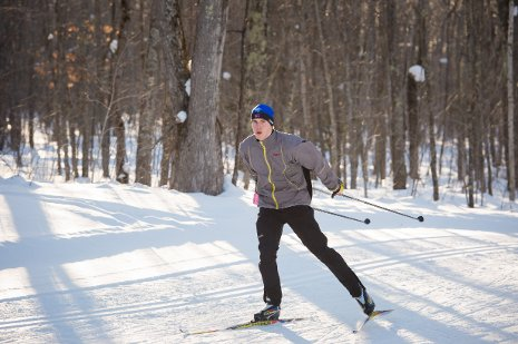 Person cross country skiing through the woods.