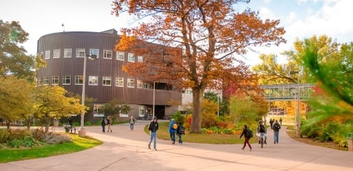 Students walking through campus during the fall