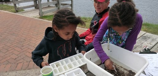 Two girls look at silt samples in a tub full of water.