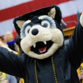 Michigan Tech's mascot, Blizzard T. Husky, at commencement