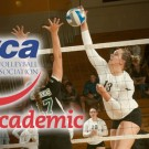 avca-team-academic-old