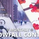 snowfall contest