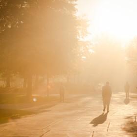 Fall Campus Fog20141016_0004