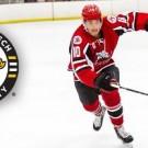 Tech Hockey Brice