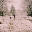 Filtered First snow 201612010001