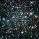 image175281-fshorizw