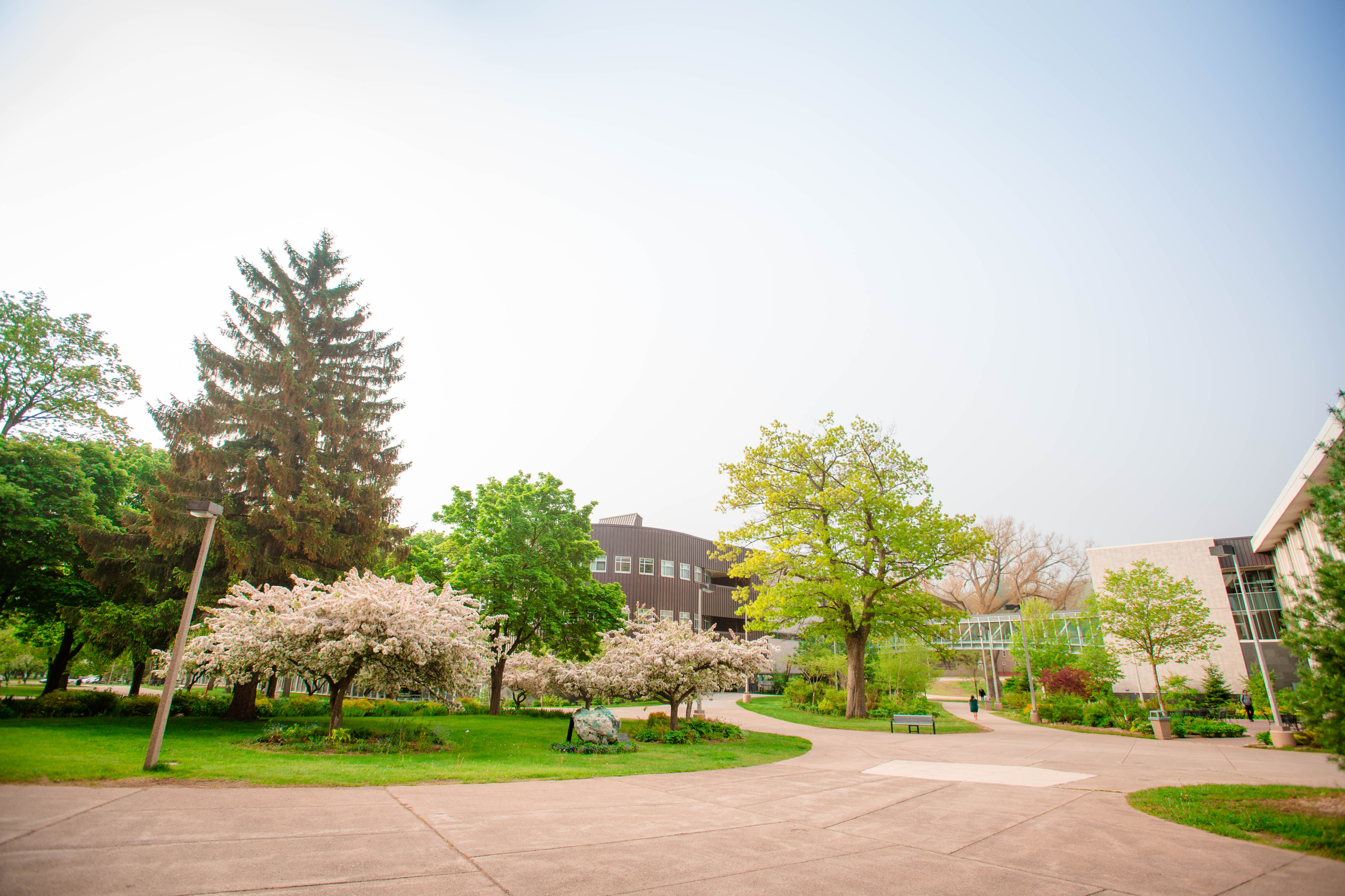 Foggy Morning Campus 201706050103