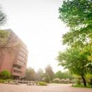 Foggy Morning Campus 201706050106