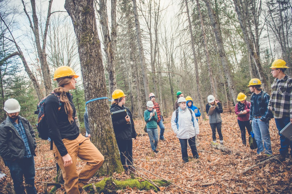 Tech Ranks 5th of Top 10 Schools in Natural Resources, Conservation.  Forestry 201611080030