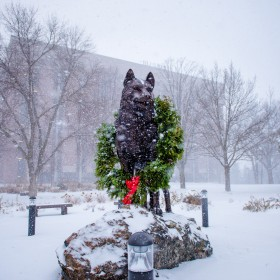 Holiday Husky Statue 201512170001