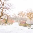 Snow Campus201711090006