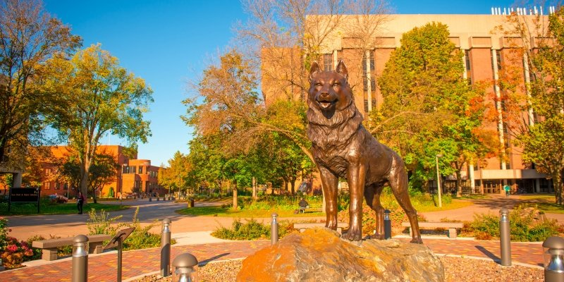 The Husky Statue