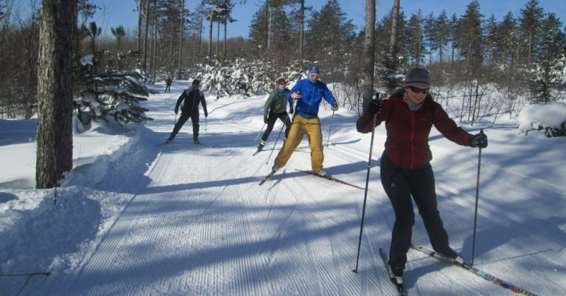 Cross Country Skiing at Swedetown