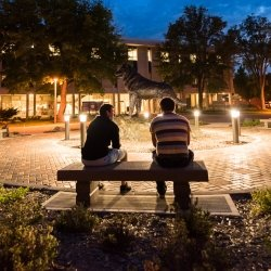 Students sitting around the husky statue at night.