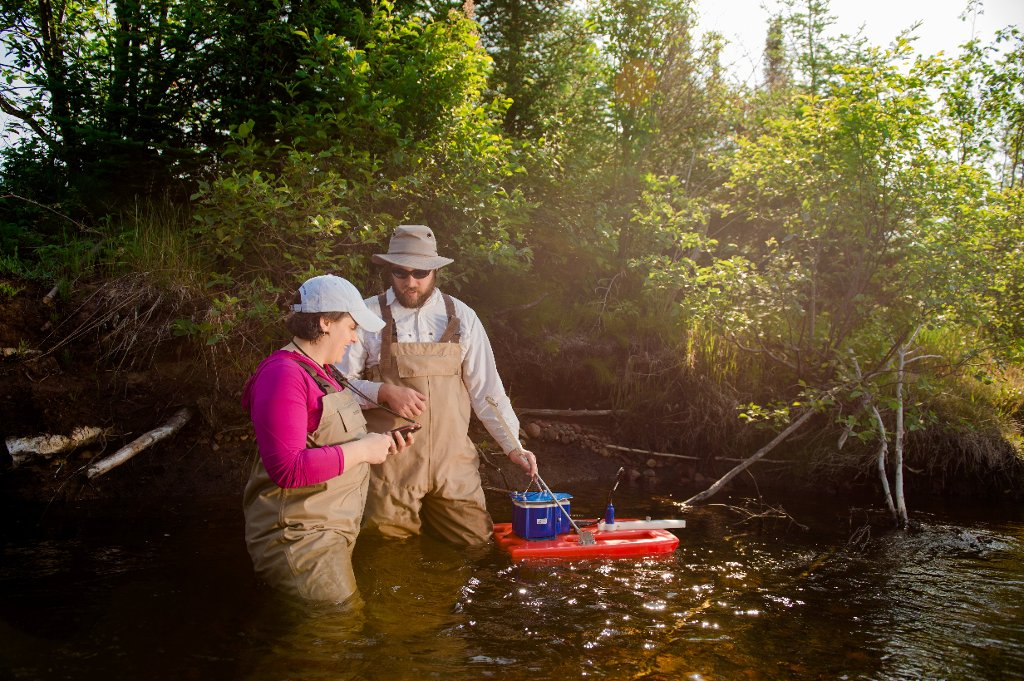 Amy Marcarelli studies nitrogen fixation and denitrification in streams across North America.