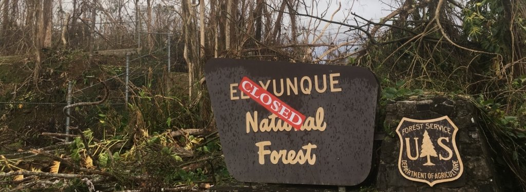 The El Yunque National Forest entrance sign with a closed sign on it and downed trees blocking the road in the background.