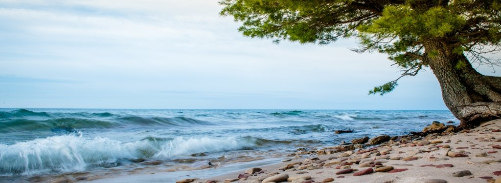 Lake Superior waves come up on the beach covered with stones beside a pine tree.