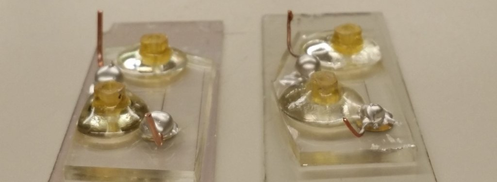 Two small electronic devices sit on glass microscope slides.