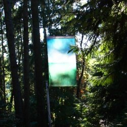 Hanging colored fabric in the woods