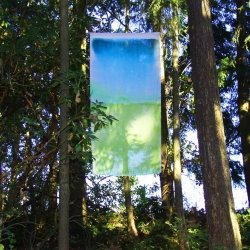 Single piece of hanging dyed fabric in the woods
