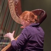 Member of the Keweenaw Symphony Orchestra plays the harp.